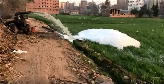 رى الاراضى الزراعية بمياه الصرف الصحى الصناعى بالزقازيق
