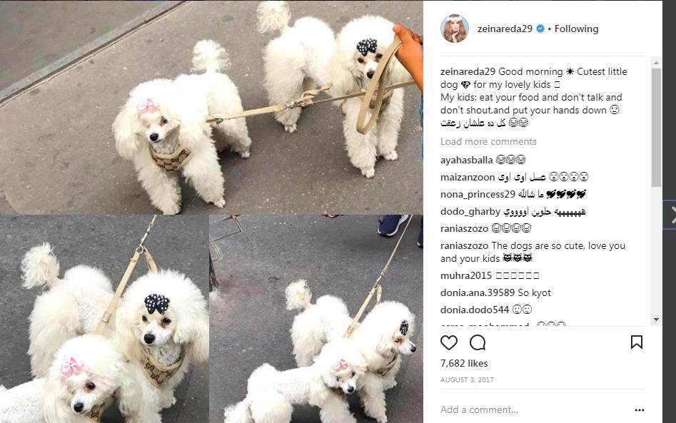 زينة تهتم بتربية الكلاب