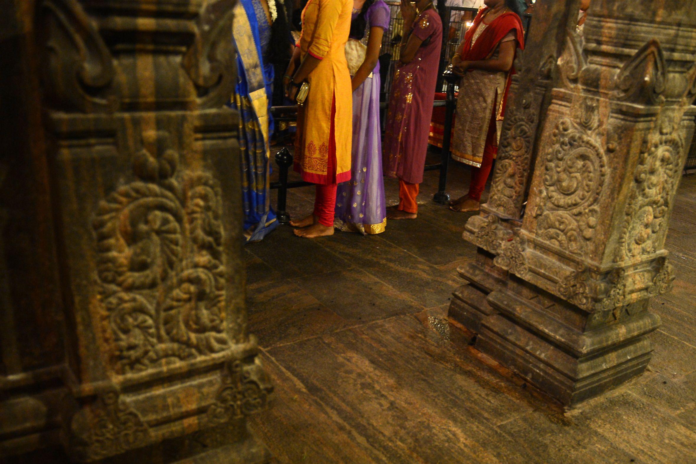 احتفالات البونجال فى معبد بسريلانكا