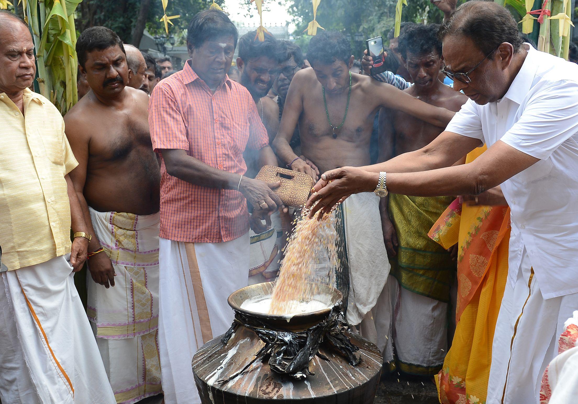 احتفالات مهرجان البونجال فى سريلانكا