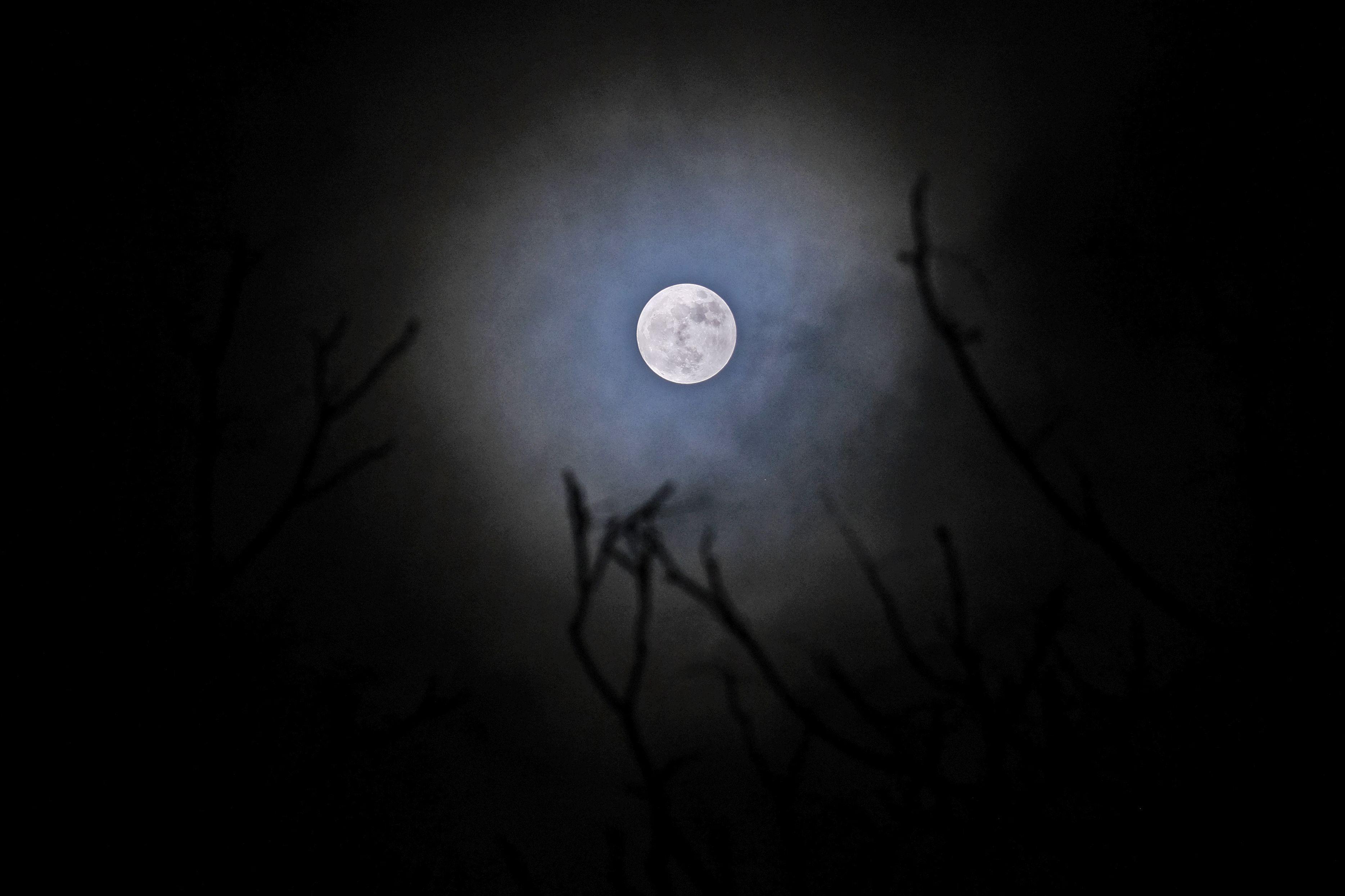 القمر العملاق يظهر فى فرنسا