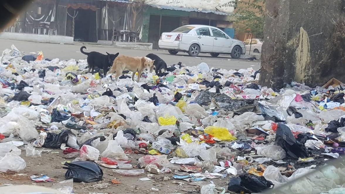 جانب من القمامة