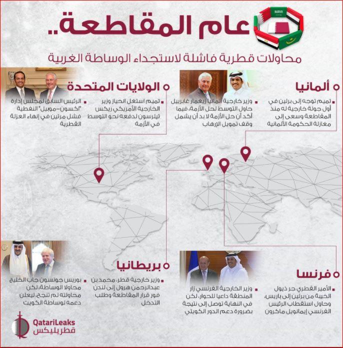 قطر ويكيلكس