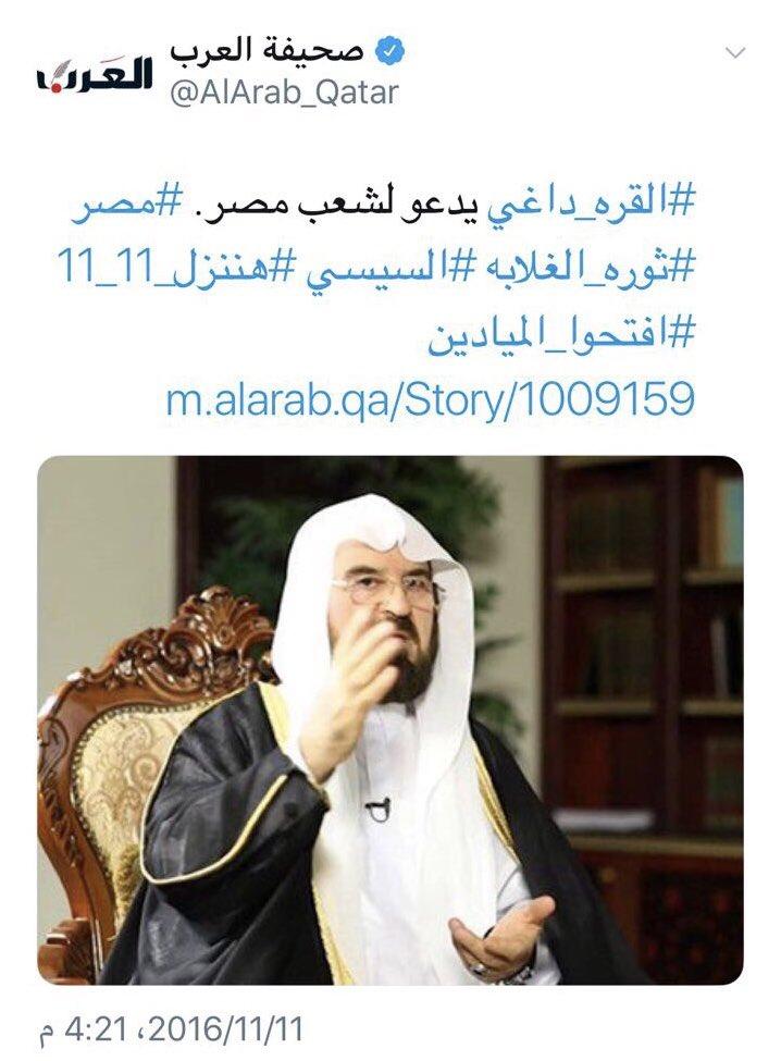 التحريض ضد مصر