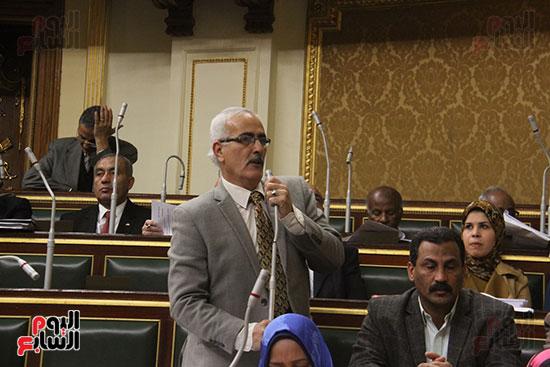 صور مجلس النواب (18)