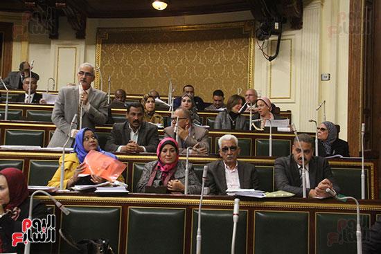 صور مجلس النواب (19)