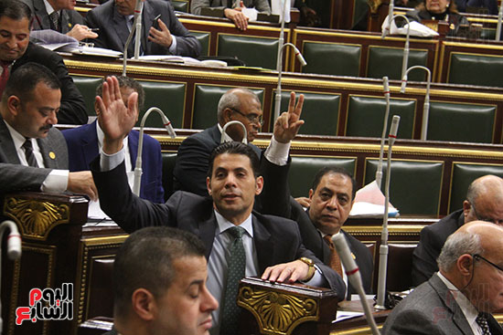 صور مجلس النواب (21)