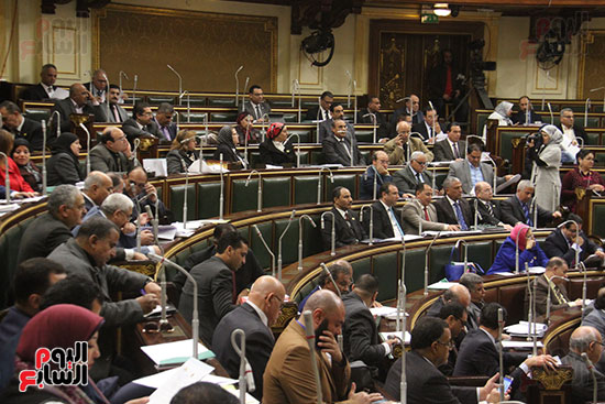 صور مجلس النواب (25)
