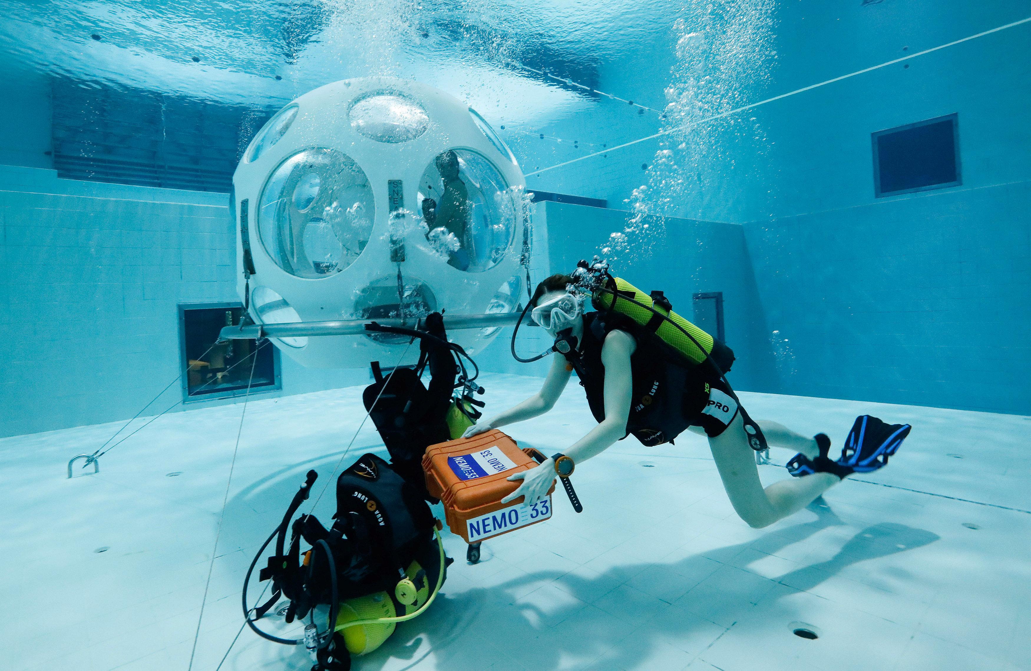 2048747-فلورنسا-تجهز-حقيبة-الغداء-لإدخالها-إلى-المطعم-تحت-الماء