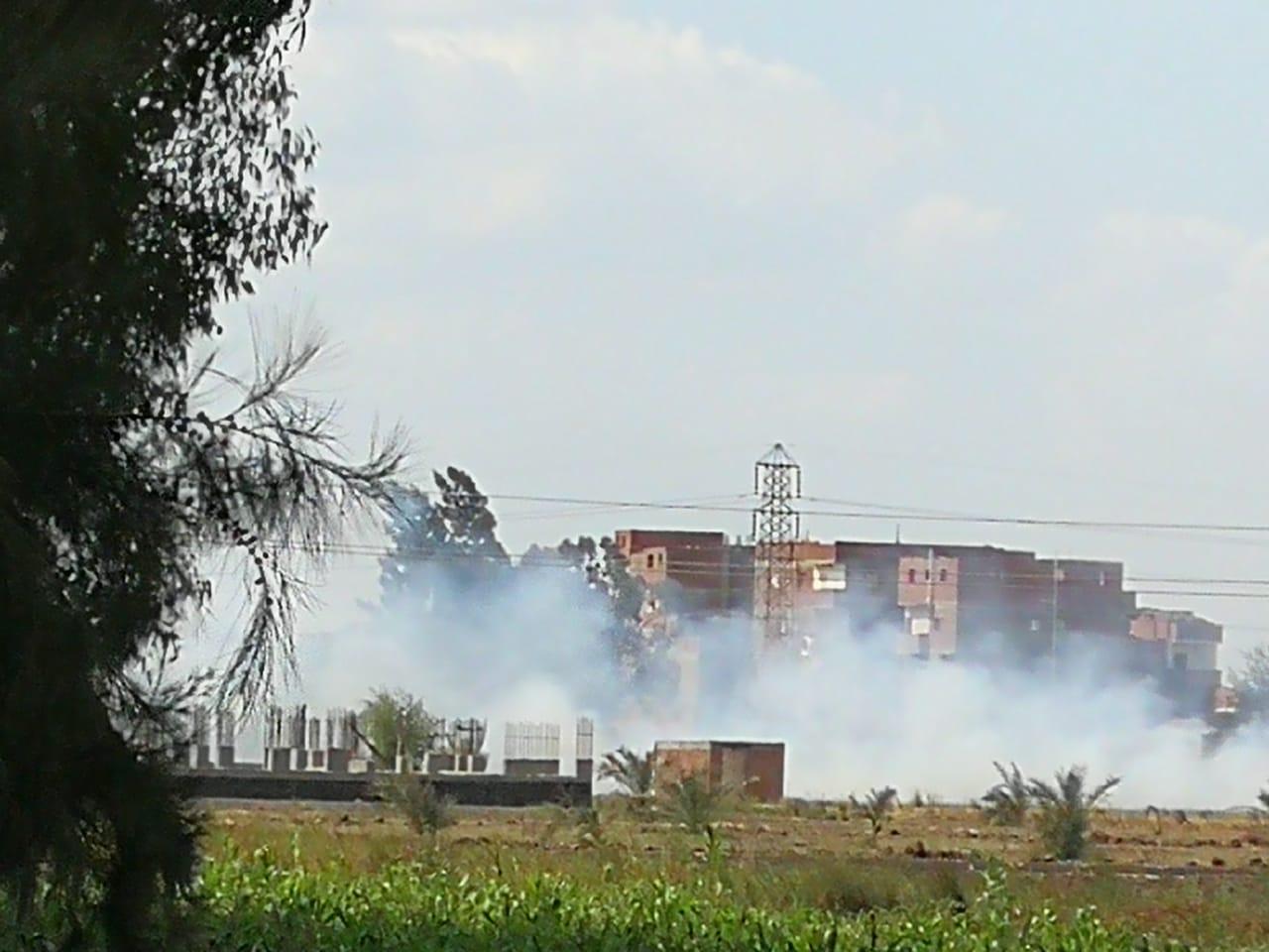 حرق قش الأرز فى الغربية  (9)