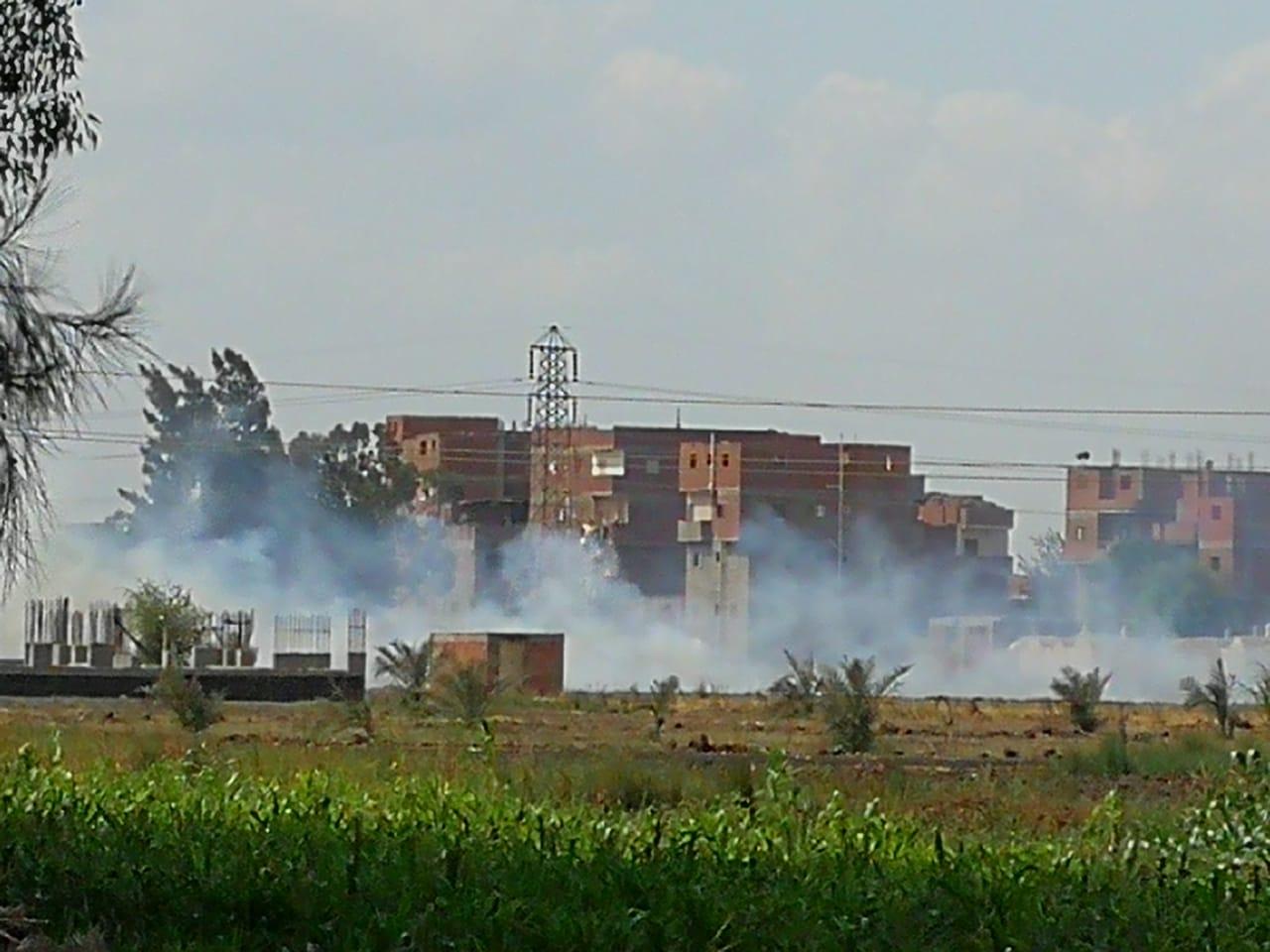 حرق قش الأرز فى الغربية  (5)