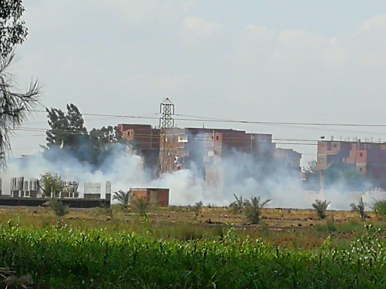 حرق قش الأرز فى الغربية  (3)