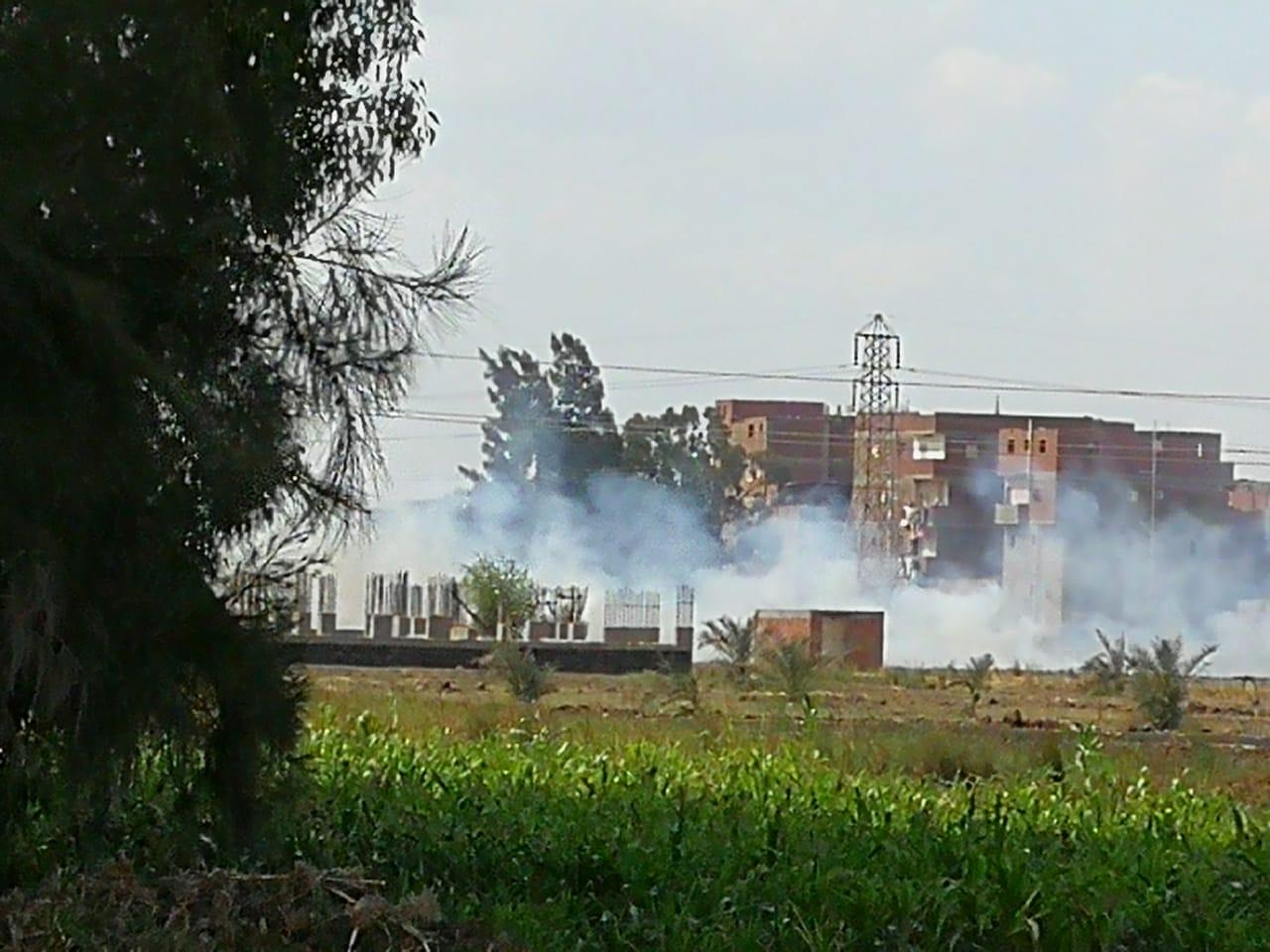 حرق قش الأرز فى الغربية  (4)