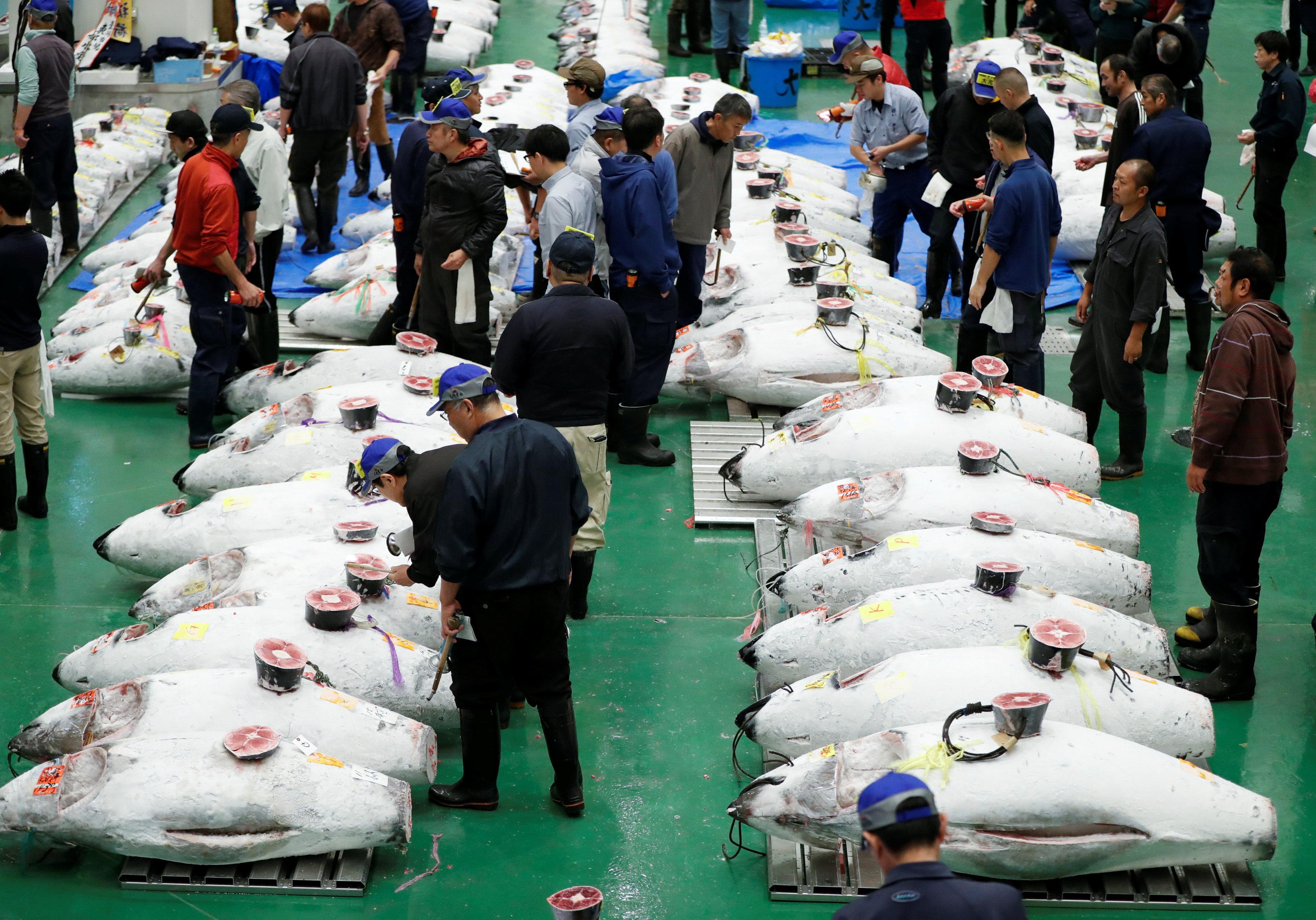 سوق أسماك فى اليابان