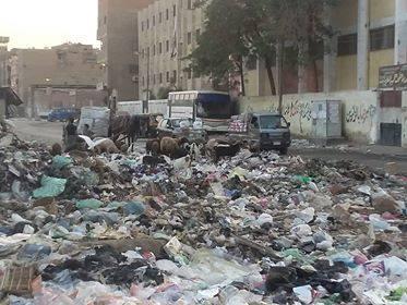 27824-القمامة-تحاصر-مدارس-شبرا-الخيمه