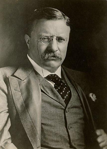 430px-Theodore_Roosevelt_1901-08
