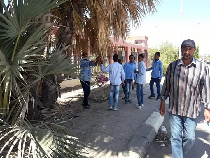 مبادرة لتنظيف شوارع مدينة نصر النوبة بأسوان ورسم جدرانها  (4)