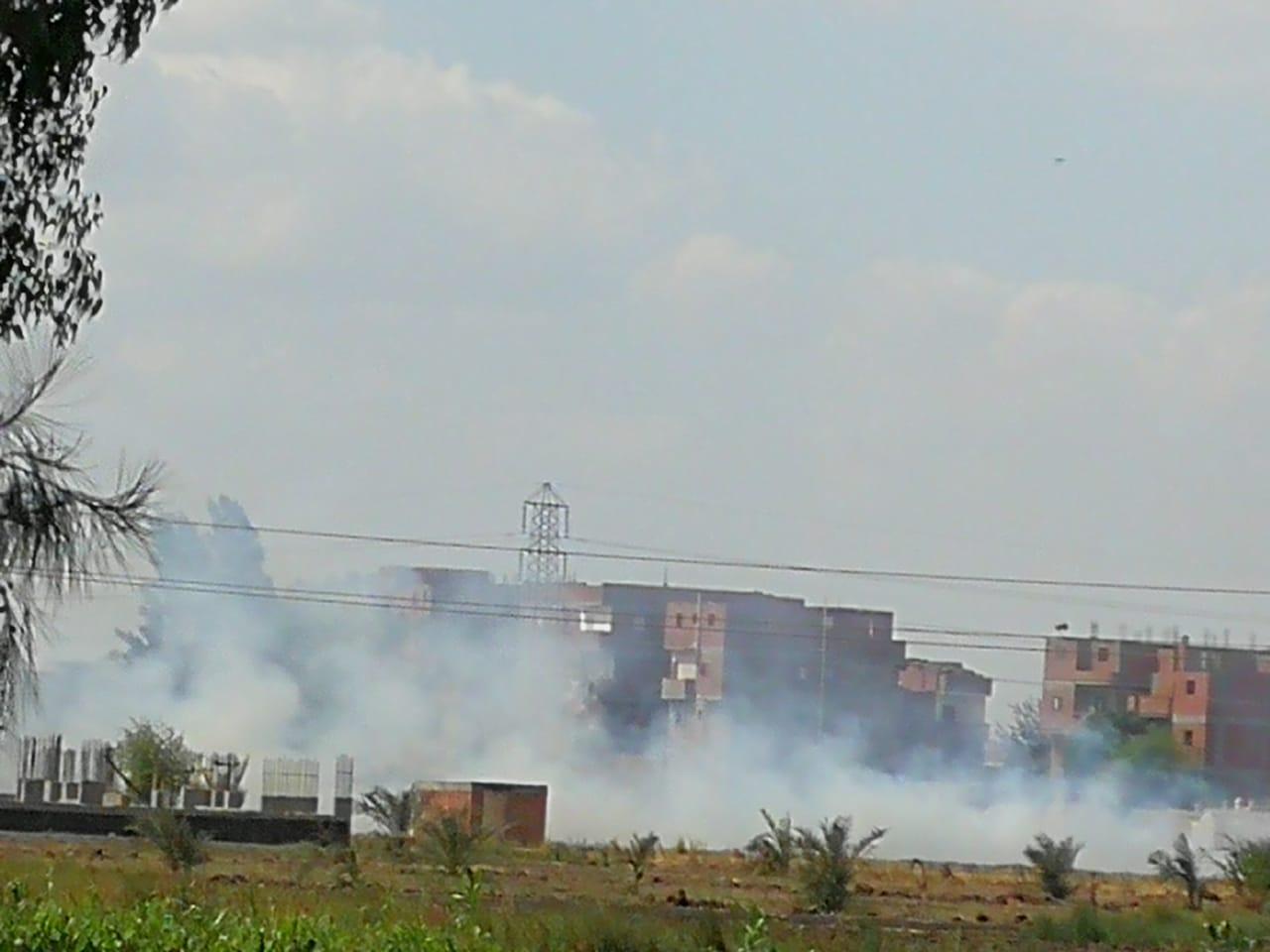 حرق قش الأرز فى الغربية  (6)