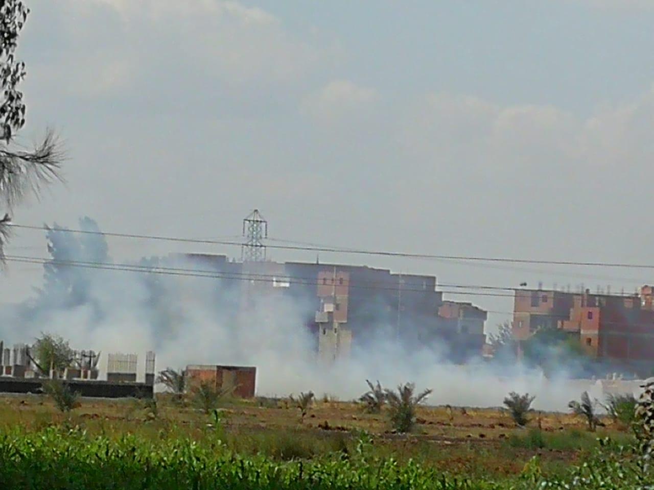 حرق قش الأرز فى الغربية  (7)