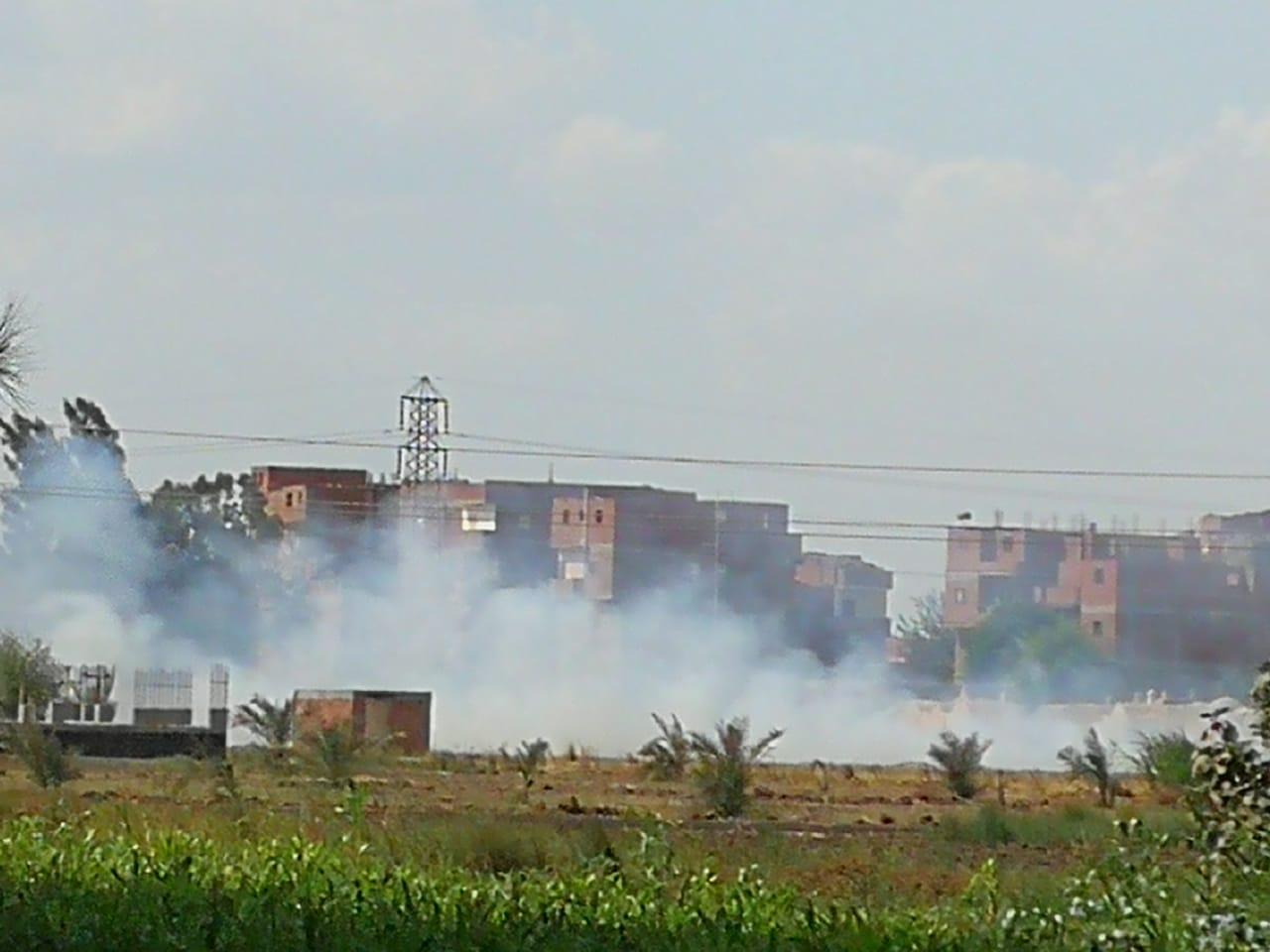 حرق قش الأرز فى الغربية  (1)