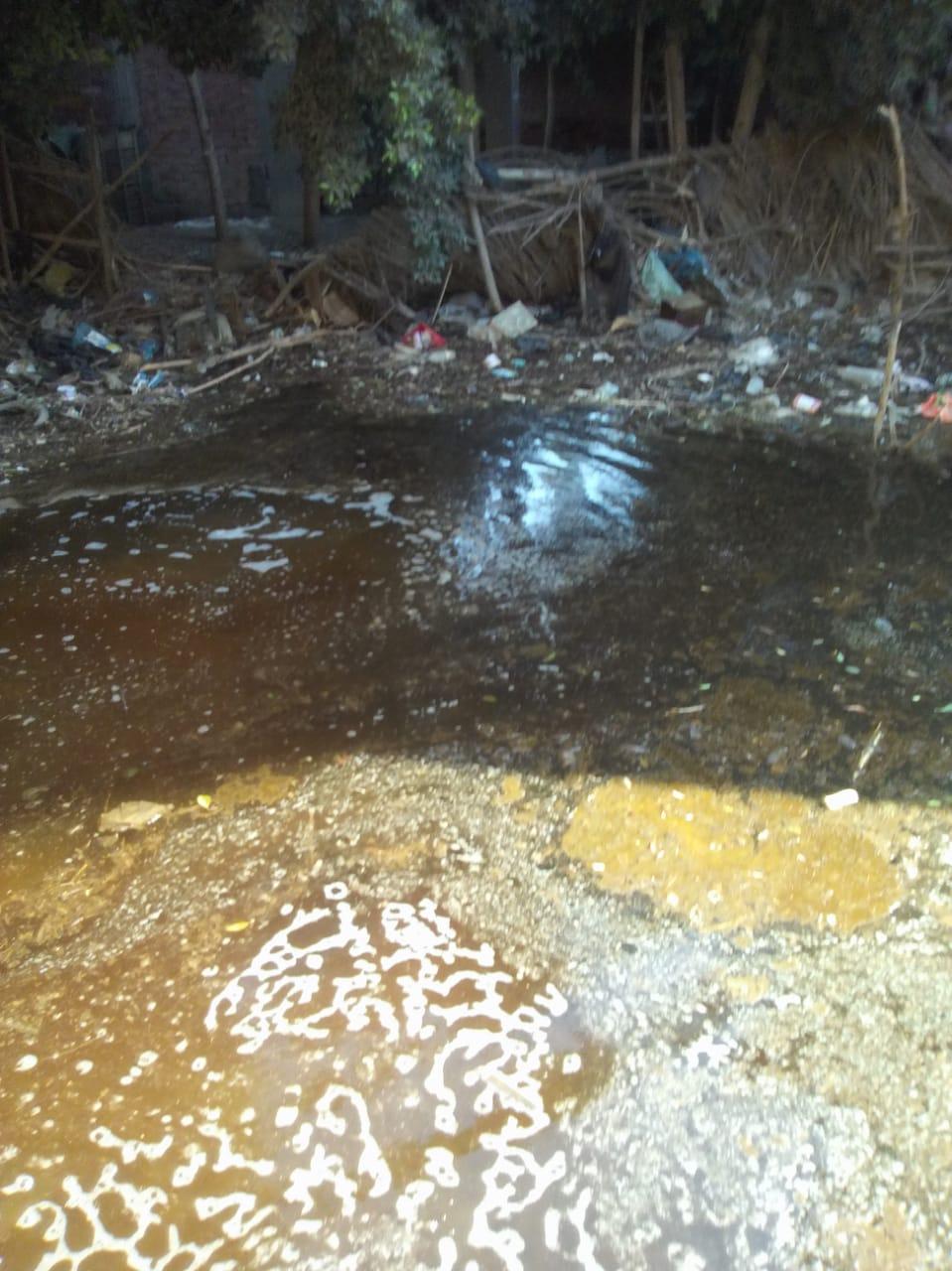 انتشار مياه الصرف الصحى بقرية فرسيس بمحافظة الغربية