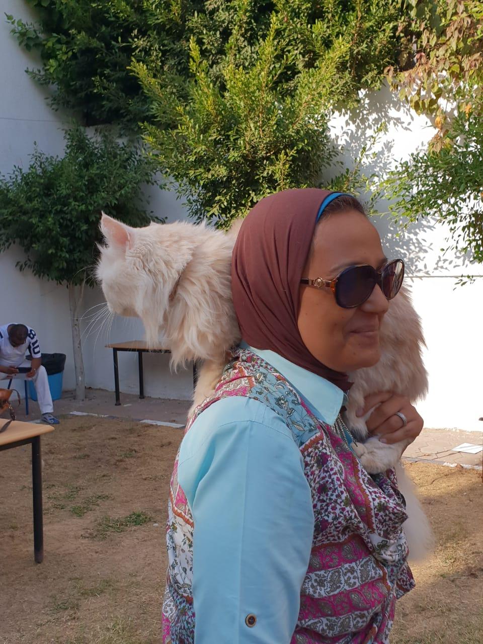 اليوم العالمى للحيوانات (4)