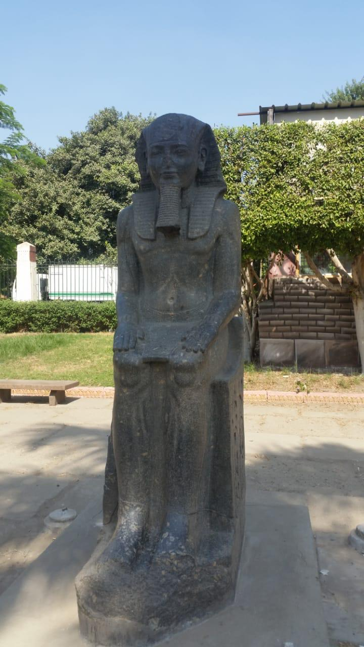 تماثيل للمتحف (3)