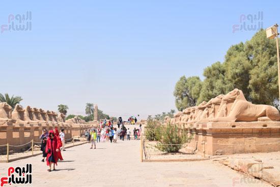 في-الموسم-السياحي-الشتوي-الجديد-معابد-الأقصر-الفرعونية-هتتكلم-صيني-(10)