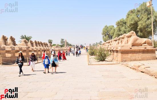 في-الموسم-السياحي-الشتوي-الجديد-معابد-الأقصر-الفرعونية-هتتكلم-صيني-(9)