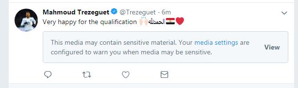 محمود تريزيجه