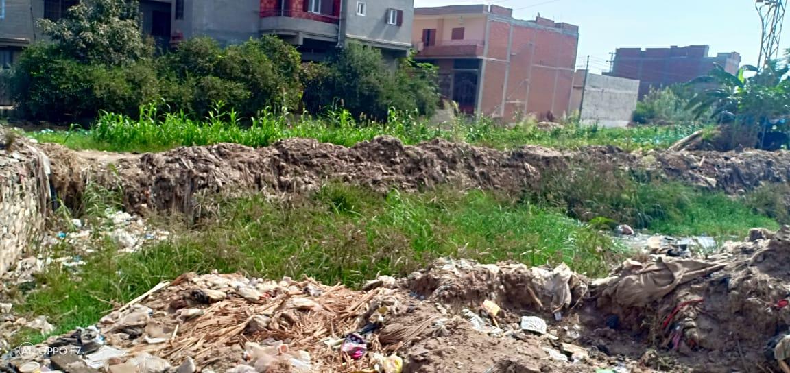 صور..  القمامة  تحاصر مصرف كنيسة دمشيت بالغربية  (6)