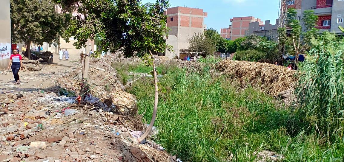 صور..  القمامة  تحاصر مصرف كنيسة دمشيت بالغربية  (4)