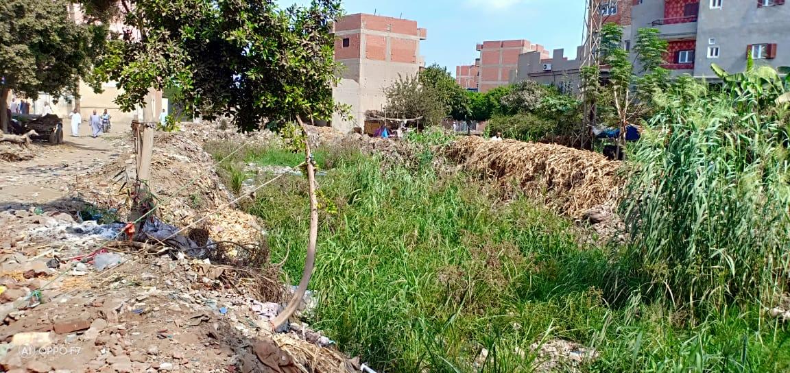 صور..  القمامة  تحاصر مصرف كنيسة دمشيت بالغربية  (1)