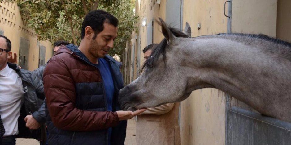 مصطفى شعبان مع احد الخيول