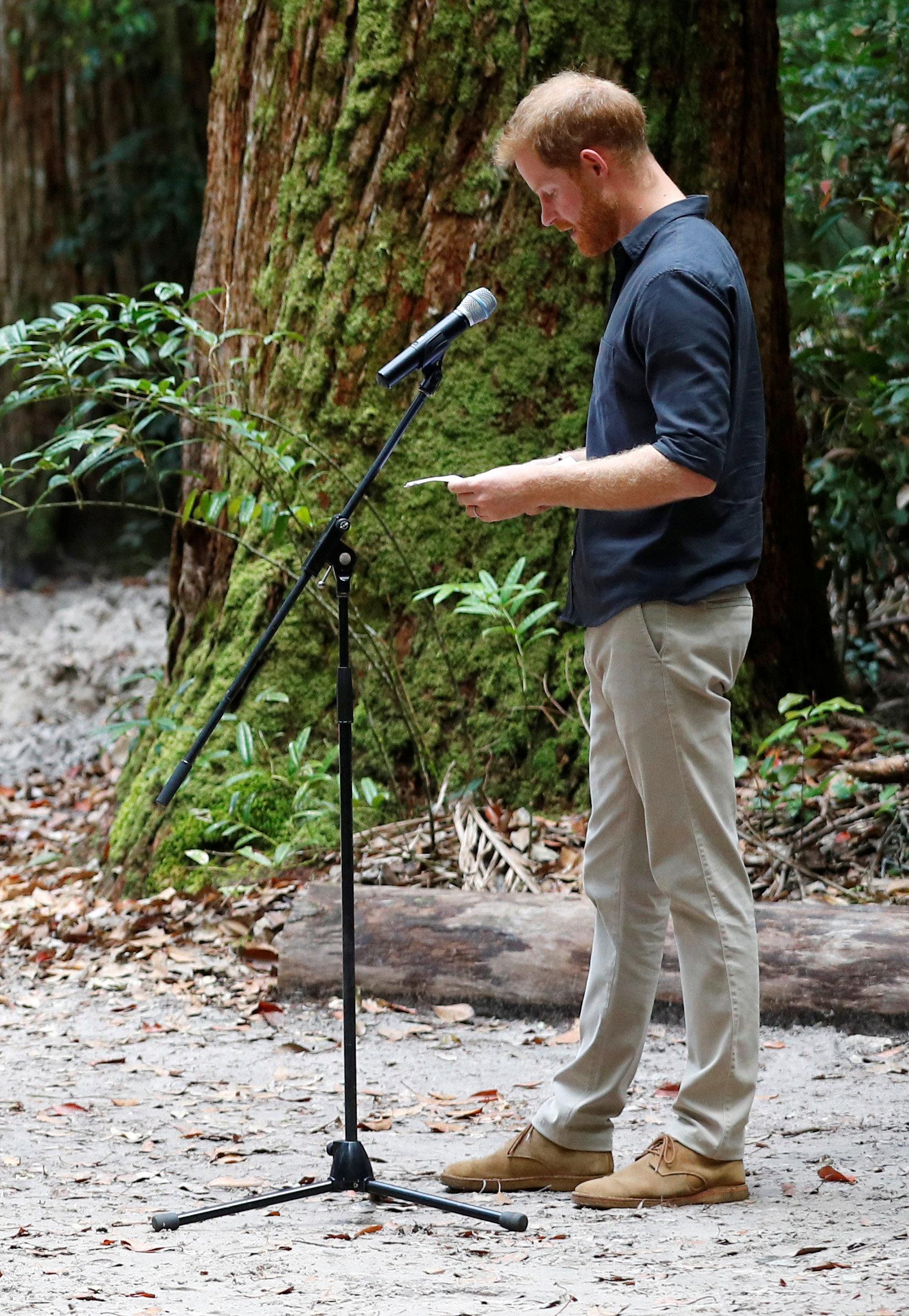 الأمير هارى يلقى كلمة على هامش الاحتفال المخصص لاستقباله
