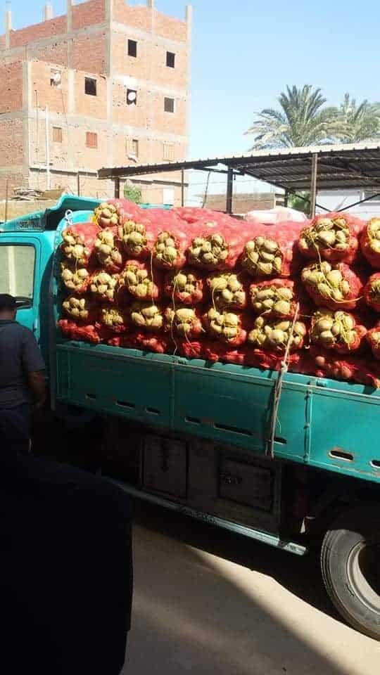 ضبط 25 طن بطاطس بأوسيم (3)