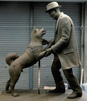 الكلب هاتشيكو وصاحبه