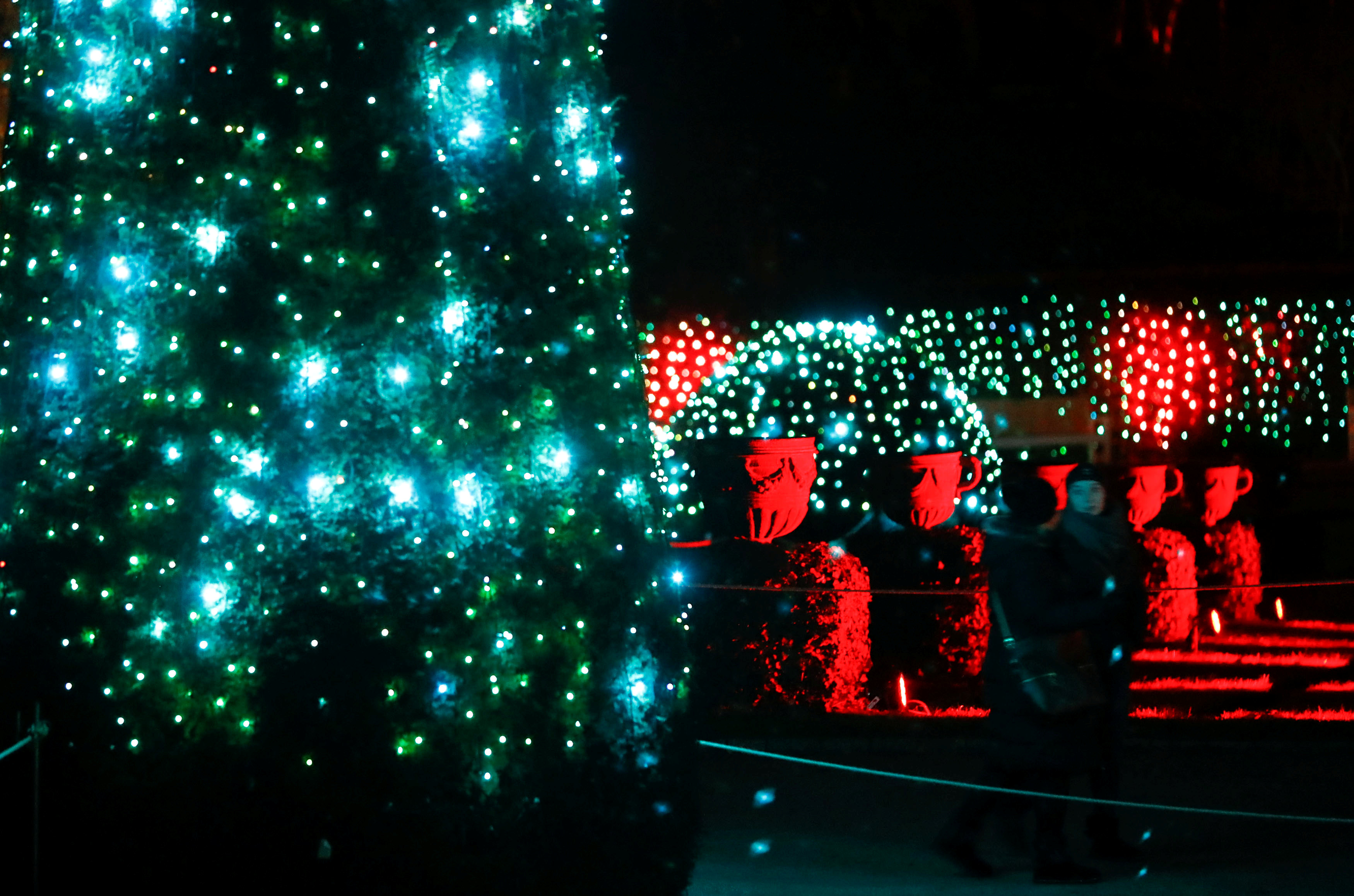 أشجار الكريسماس بشوارع برلين