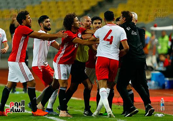 مصر وتونس (11)