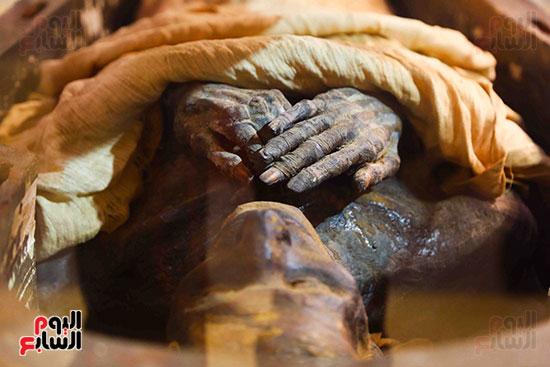 احتفالية المتحف المصرى بالتحرير (37)