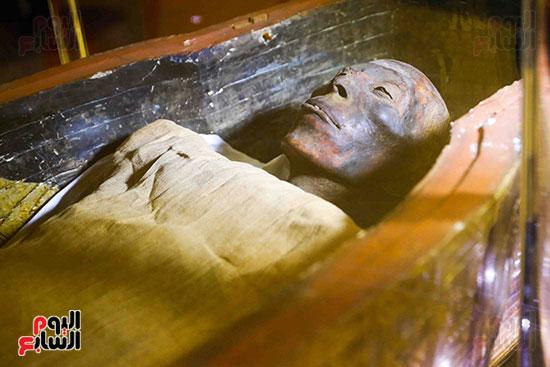احتفالية المتحف المصرى بالتحرير (24)
