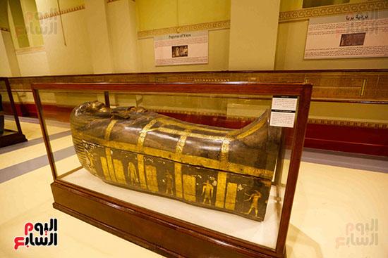 احتفالية المتحف المصرى بالتحرير (10)