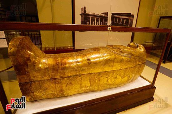 احتفالية المتحف المصرى بالتحرير (11)