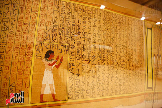 احتفالية المتحف المصرى بالتحرير (18)