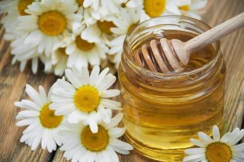 البابونج والعسل