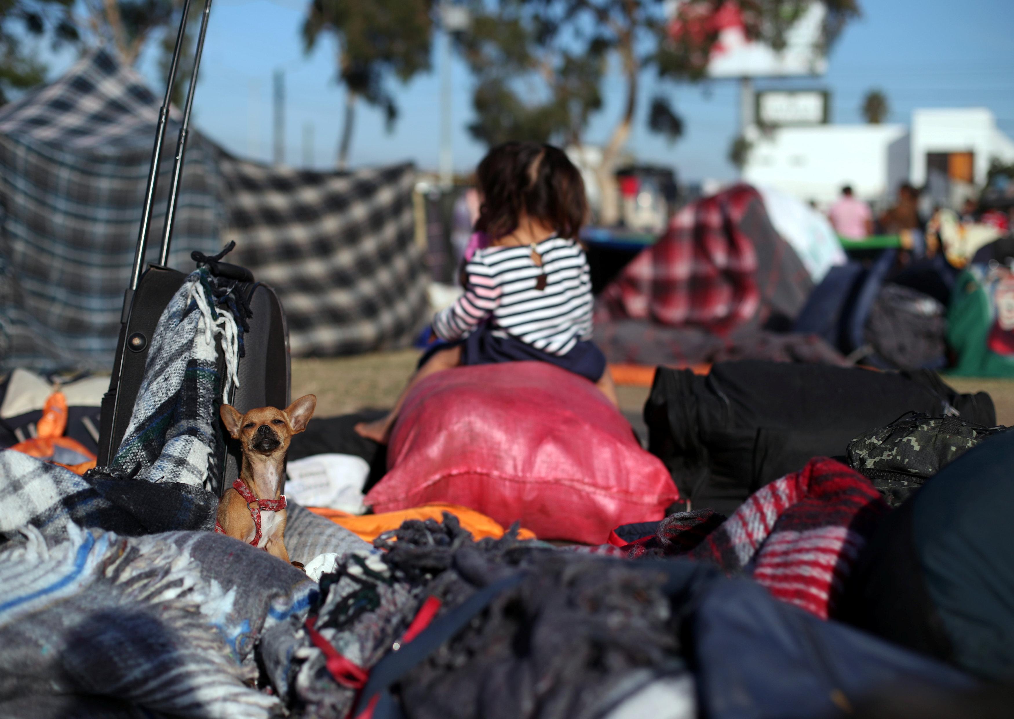 طفلة بين أكوام من حقائب المهاجرين
