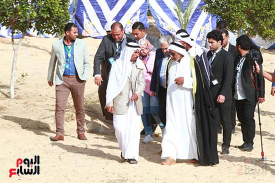 قرية الروضة بشمال سيناء (6)