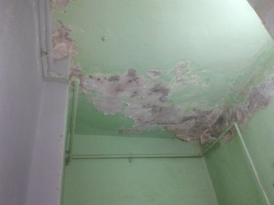 تآكل حوائط الغرفة (3)
