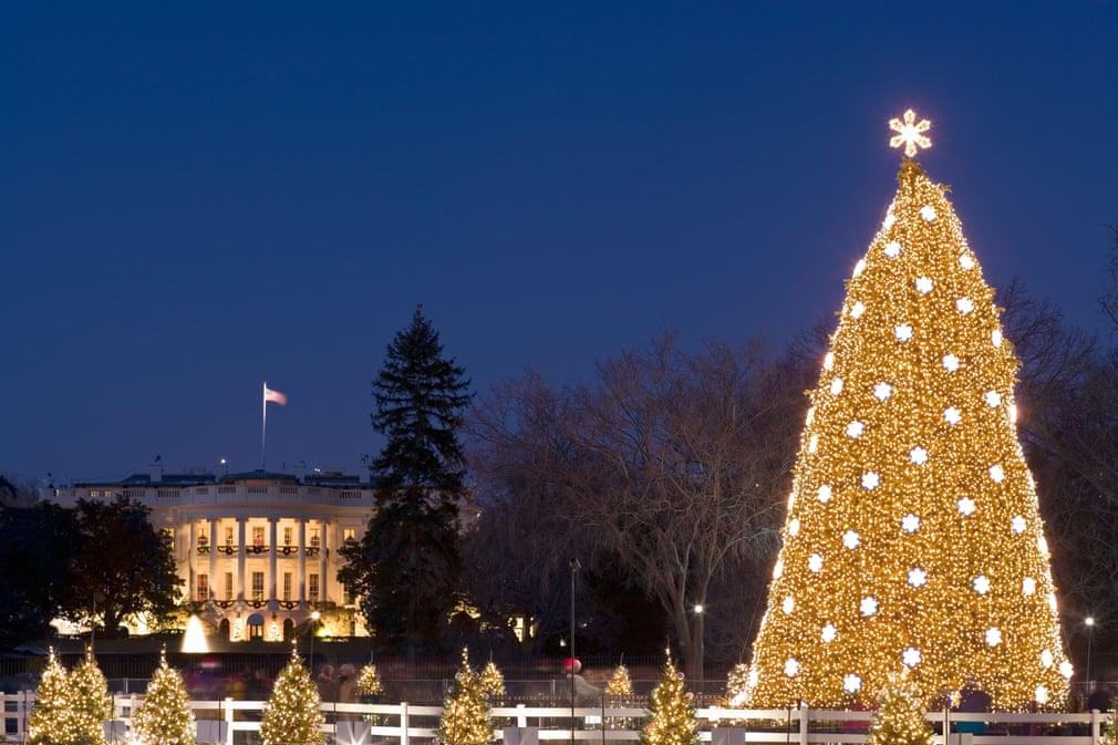 شجرة كريسماس 2005