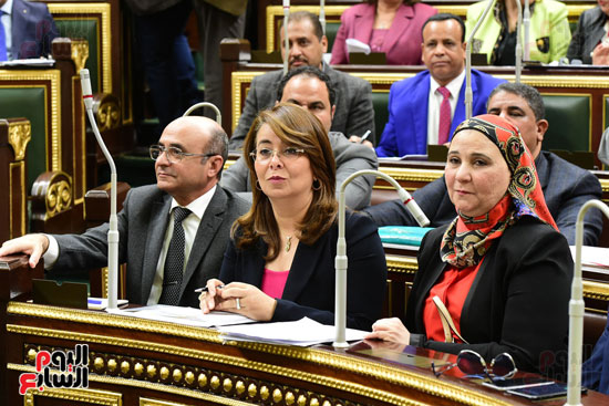 الجلسة العامة (20)